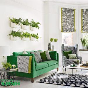 nội thất xanh (green interior) phòng khách