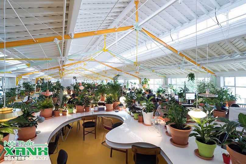 sân vườn nội thất xanh